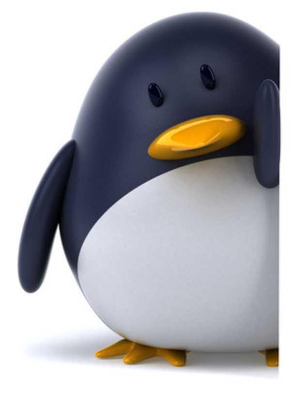 google penguin : nouvel algorithme pour referencement naturel de google