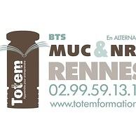 totem - rennes : des bts en alternance...pas comme les autres